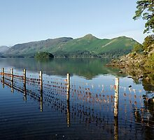 Catbells and Maiden Moor at Derwentwater in the English Lake District by Martin Lawrence
