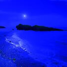 THE BLUES FEELING by leonie7