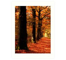 Lovely October Colors Art Print
