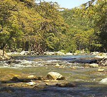 Autumn on the River, Texas by Tamas Bakos