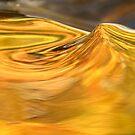 Molten Gold by Gina Ruttle  (Whalegeek)