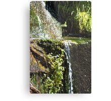 Like Streams of Water in the Desert Metal Print