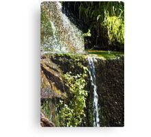 Like Streams of Water in the Desert Canvas Print