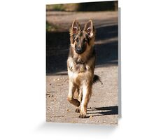 Jaxxer Greeting Card