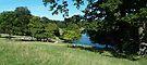 Studley Park  by WatscapePhoto