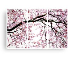 Cherry Blossoms- The Panel Series Canvas Print