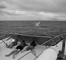 Whale Watch by Carl Goulding