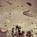 Drowning Autumn by Johnny Joo