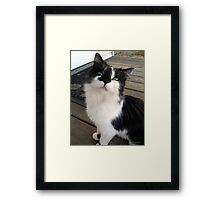 I'm Just ' Lucky ', I Guess  Framed Print