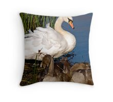 Cygnets Napping Throw Pillow