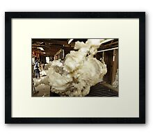 Roustabout at work, Tooborac, Victoria, Australia Framed Print