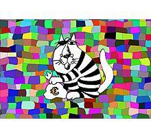Crime cat Photographic Print