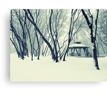 Saturday in the park Canvas Print