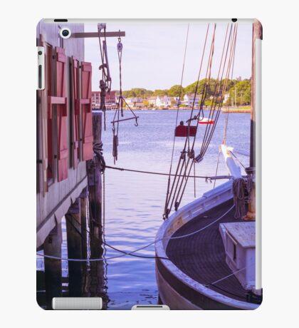 Scenic Display iPad Case/Skin