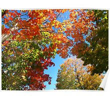 Autumn is so divine! Poster