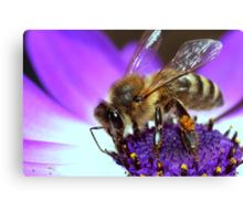 Bee Paradiso Canvas Print