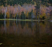 Crawford Notch State Park by chris vaughan