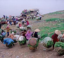 Women selling vegetables   ,  Hanoi     Vietnam by yoshiaki nagashima