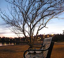 Sunset Bench by Brenden Bencharski