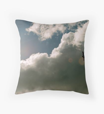 Out of the Sun Throw Pillow