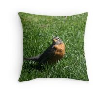 Do I know you? Throw Pillow