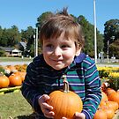 Pumpkin Time by Catherine Crimmins