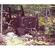 Old truck in woods Photographic Print