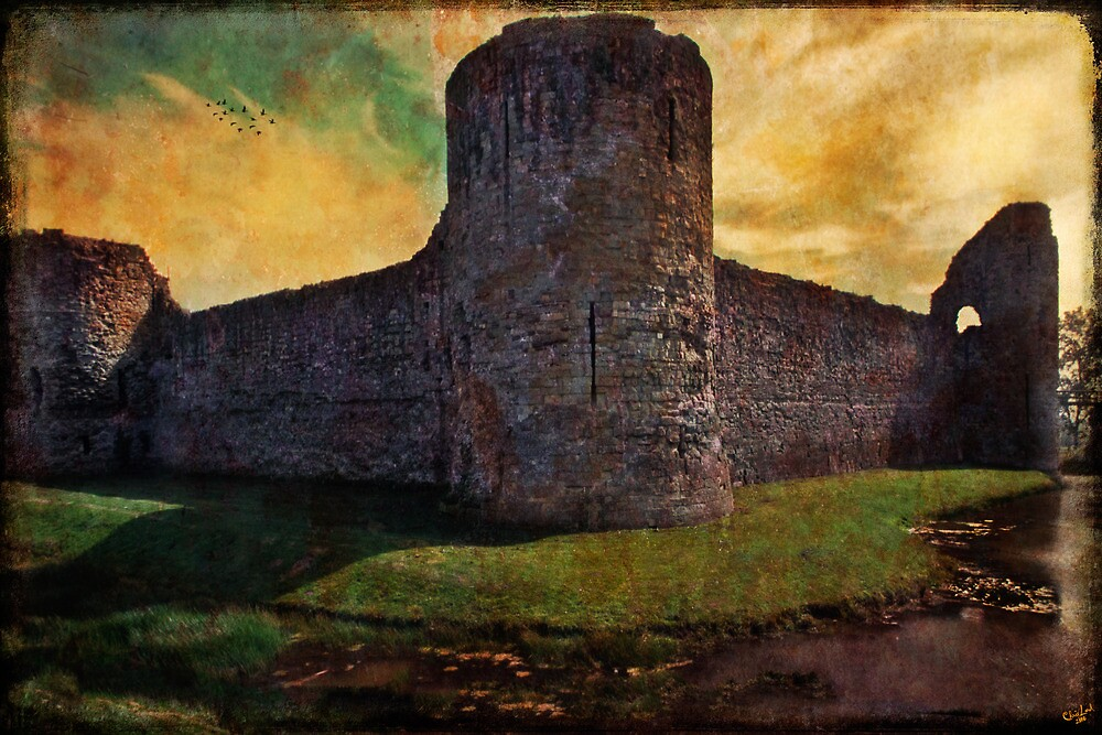 Pevensey Castle Ruins by Chris Lord