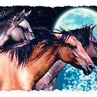 Mustang Moon by Skye Ryan-Evans