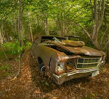 Abandoned Chevelle in Cape Breton by kenmo