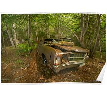 Abandoned Chevelle in Cape Breton Poster