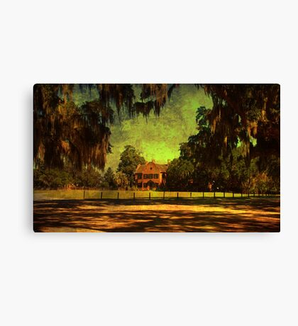 Middleton Place 2 Canvas Print