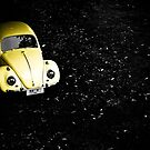 Beetle by lokanin
