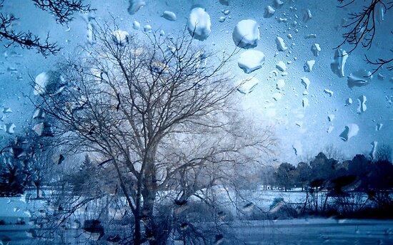 Window Scene ©  by Dawn M. Becker
