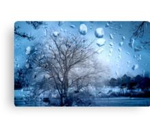 Window Scene ©  Canvas Print