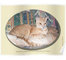 Cat calendar image #8 Raymond in repose  Poster