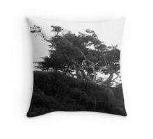 Perseverance Throw Pillow