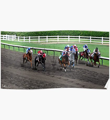 At The Horse Races Poster