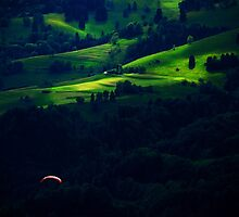 Paragliding in the Black Forest by Imi Koetz