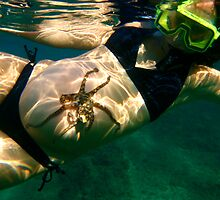 Octopuss on Prego Bellly by mauimatt