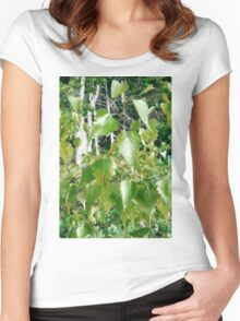 Shine in the Sun, Dance in the Wind: Boothbay Leaves Women's Fitted Scoop T-Shirt
