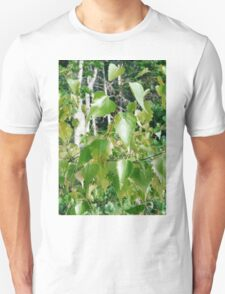 Shine in the Sun, Dance in the Wind: Boothbay Leaves T-Shirt