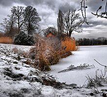 Winter by FrankTheLank