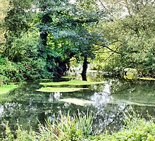 The Stour by Clive