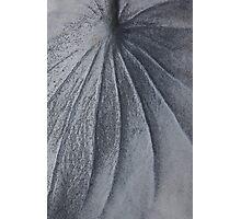paint brush Photographic Print