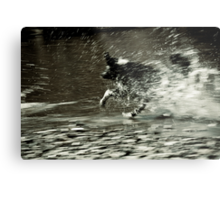 Let's move some water Metal Print