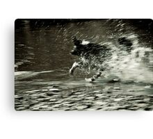 Let's move some water Canvas Print