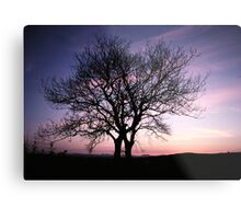 Two Trees embracing Metal Print