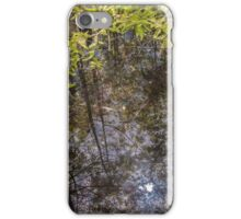 Reflective Sunlight at the Slough iPhone Case/Skin