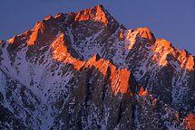Lone Pine Peak by Inge Johnsson